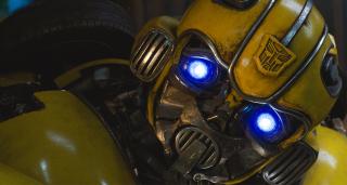 Bumblebee - zdjęcie