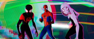 Spider-Man Uniwersum