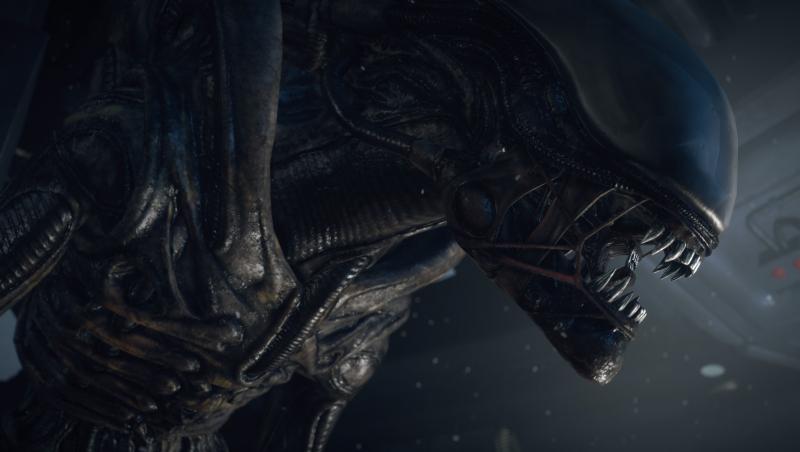 "Neill Blomkamp oficjalnie za kamerą filmu ""Obcy 5""!"