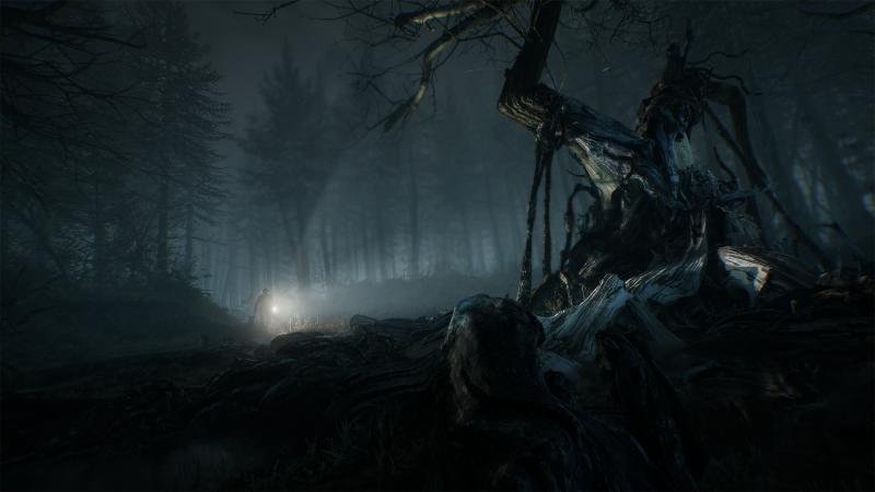 Blair Witch - 10 minut w mrocznym lesie. Zobacz nowy gameplay
