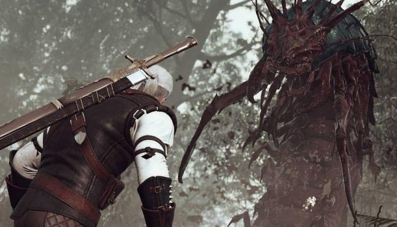 Wiedźmin - opis potwora z 2. sezonu. Zobaczymy trening Ciri w Kaer Morhen?
