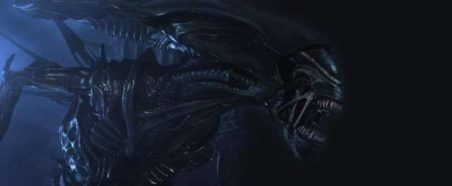 "Steam zamyka drzwi dla ""Aliens: Colonial Marines"" i ""Alien vs Predator"""