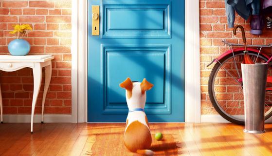 Sekretne życie zwierzaków domowych – recenzja