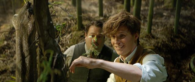Fantastyczne zwierzęta i jak je znaleźć 2 – Newt i Jacob na nowym zdjęciu z filmu