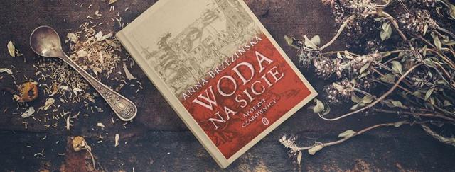 Woda na sicie – recenzja książki