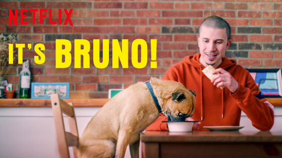 It's Bruno: sezon 1 - recenzja