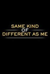Jednakowo inni