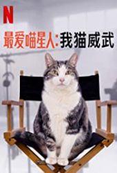 Niech żyją koty!